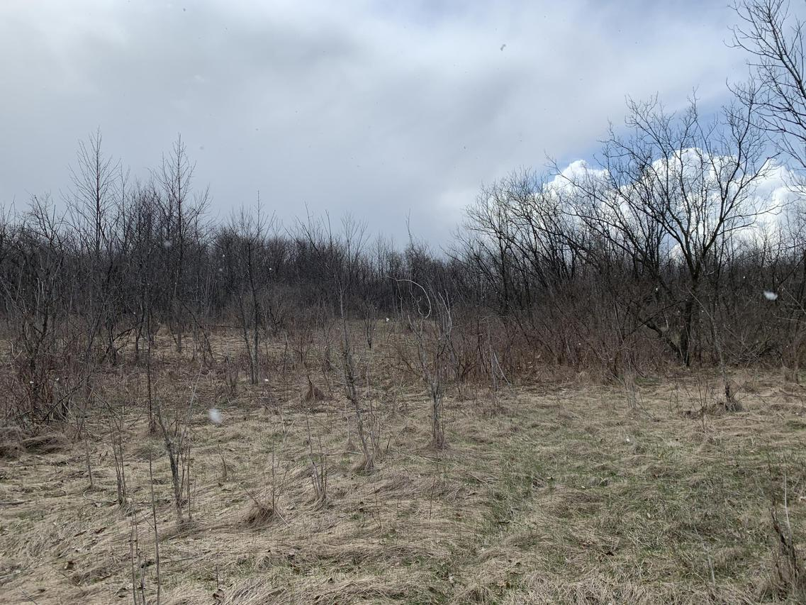 5.1 Acres Pelishek Rd., Sherman, WI 53001