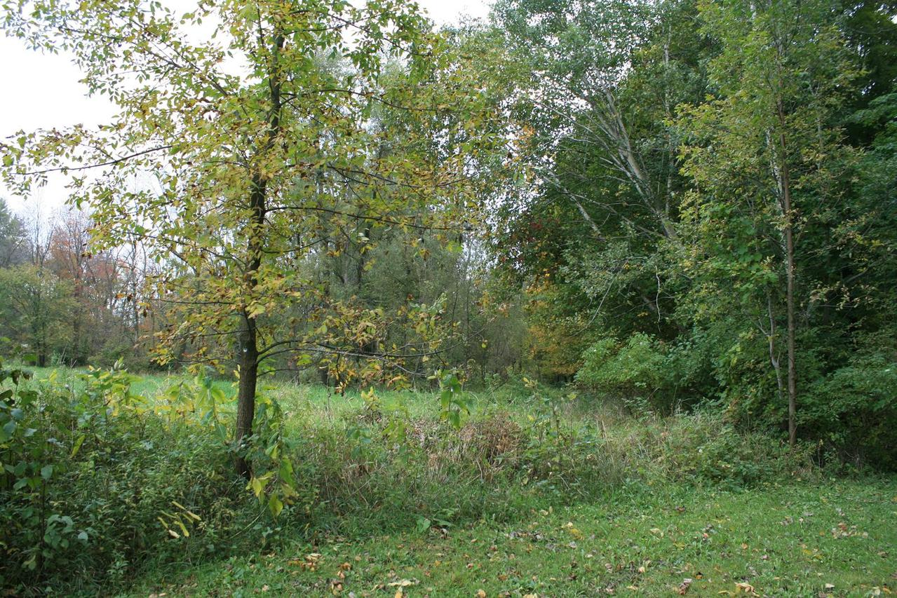 N620 County Road Cc #20 acres, Sherman, WI 53075