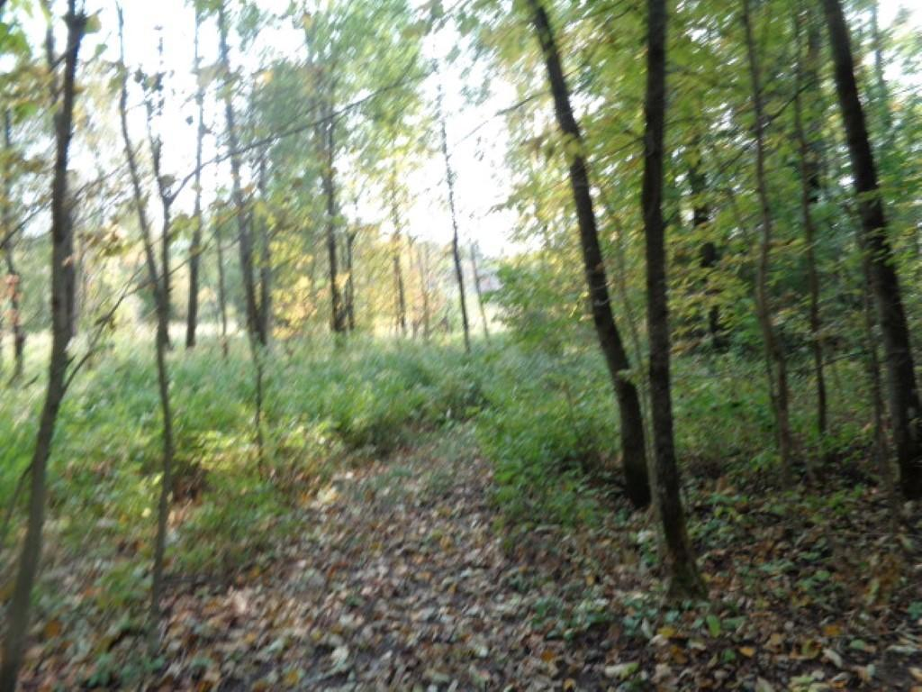Mosquito Lake Rd., Townsend, WI 54175