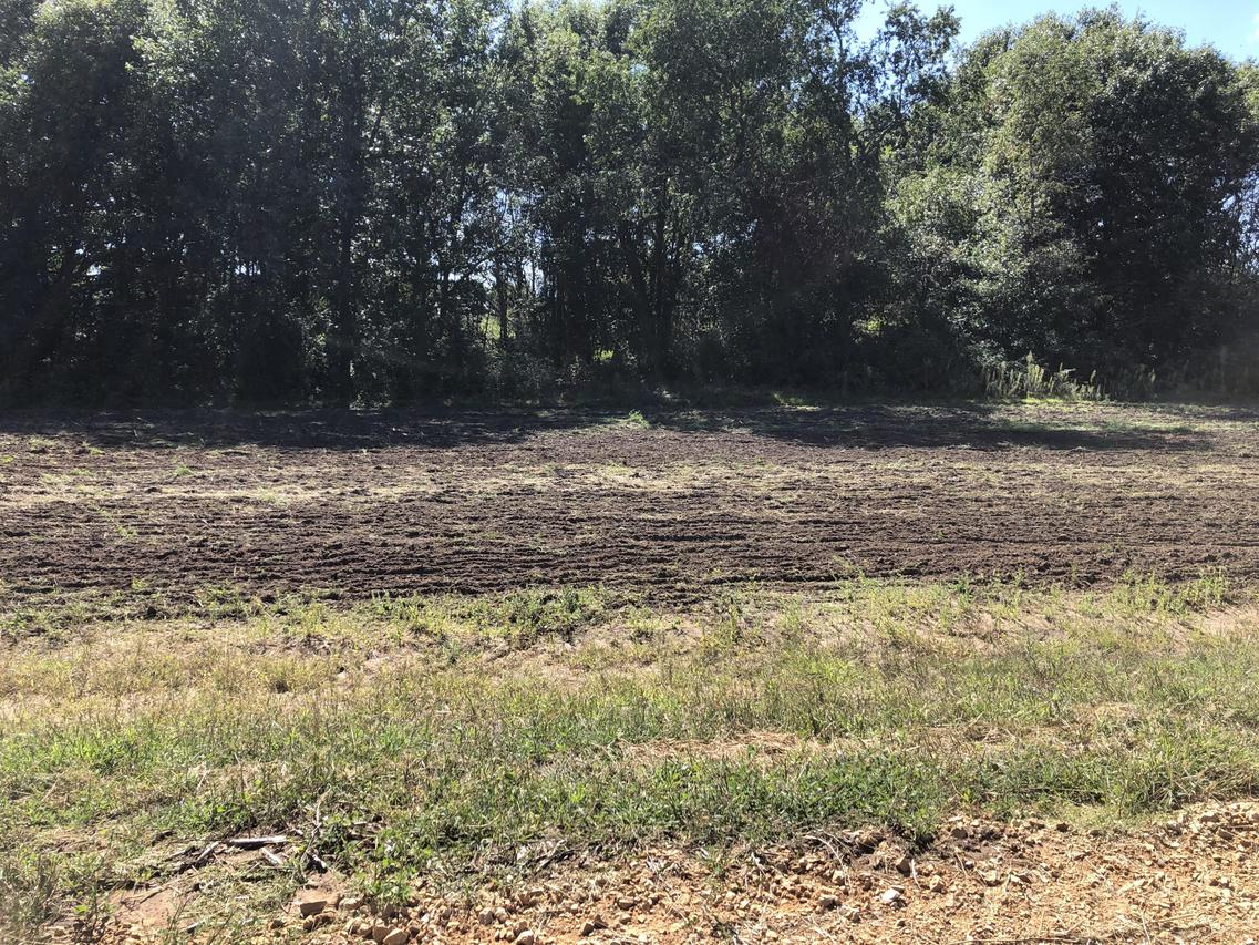 Lot 4 Impact Rd., Angelo, WI 54656