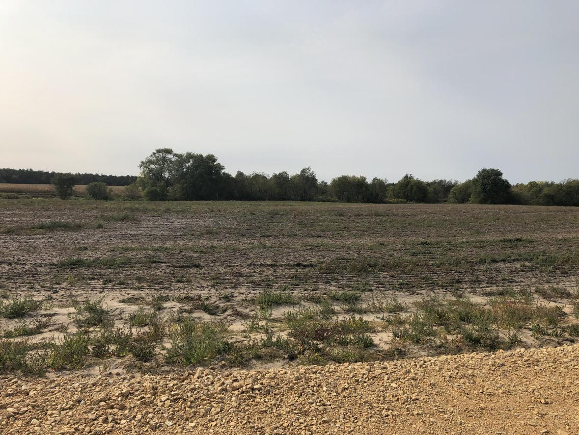 Lot 8 Impact Rd., Angelo, WI 54656