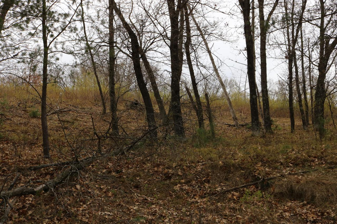 LOT 10 Jargon Ave., Wells, WI 54656