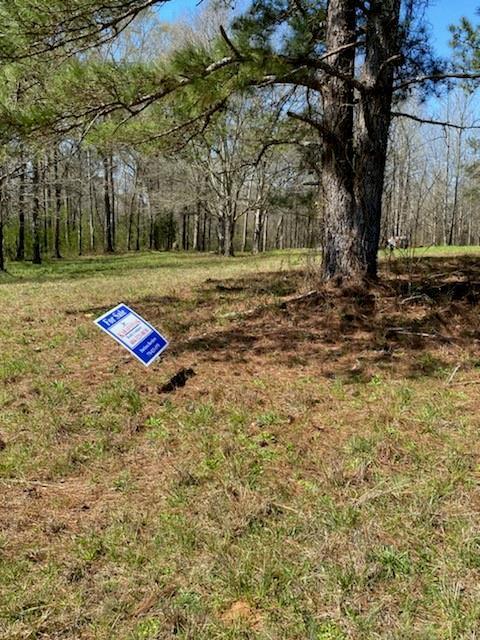 Redbone Run, Barnesville, GA 30204
