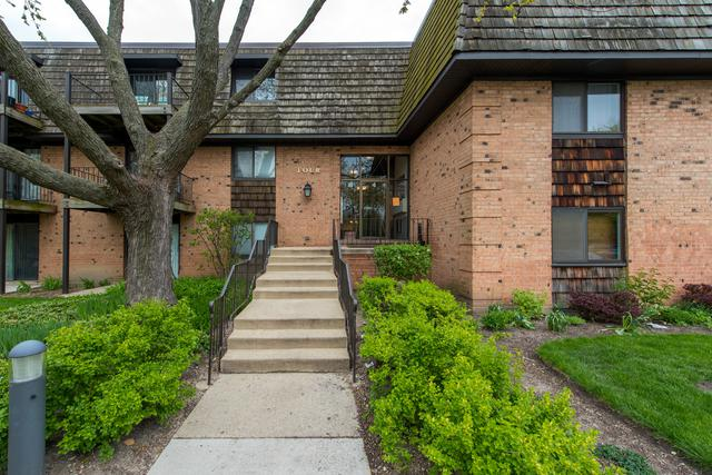 4 Oak Creek Dr. #2503, Buffalo Grove, IL 60089